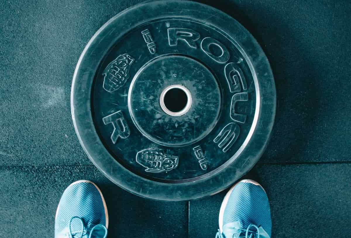 7 Best Bumper Plates for Home Gyms