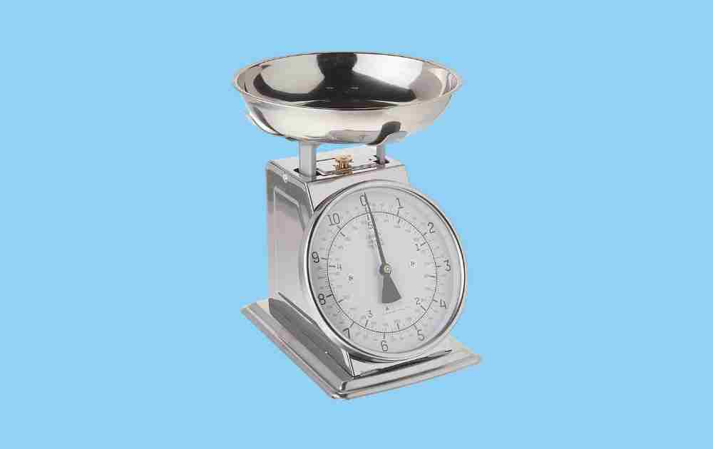 Taylor Precision Analog Food Scale