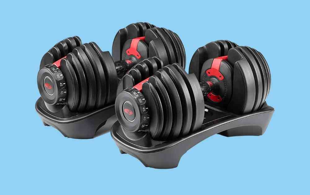 Bowflex SelectTech 552 Adjustable Dumbbells - where to buy