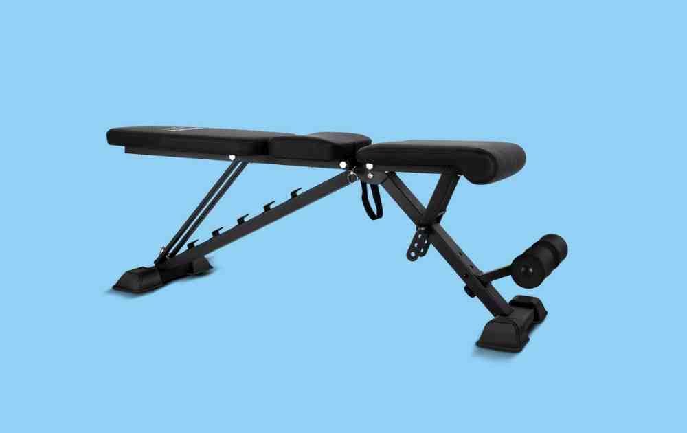 Flybird Adjustable Bench Review
