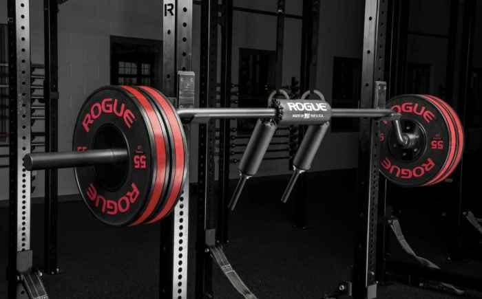 SB-1 Rogue Safety Squat Bar - Top Pick